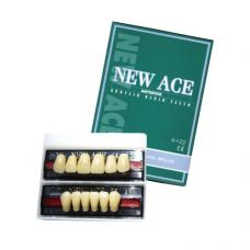 New Ace Anterior